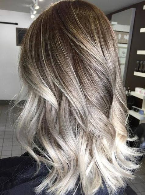 siva boja kose (2)